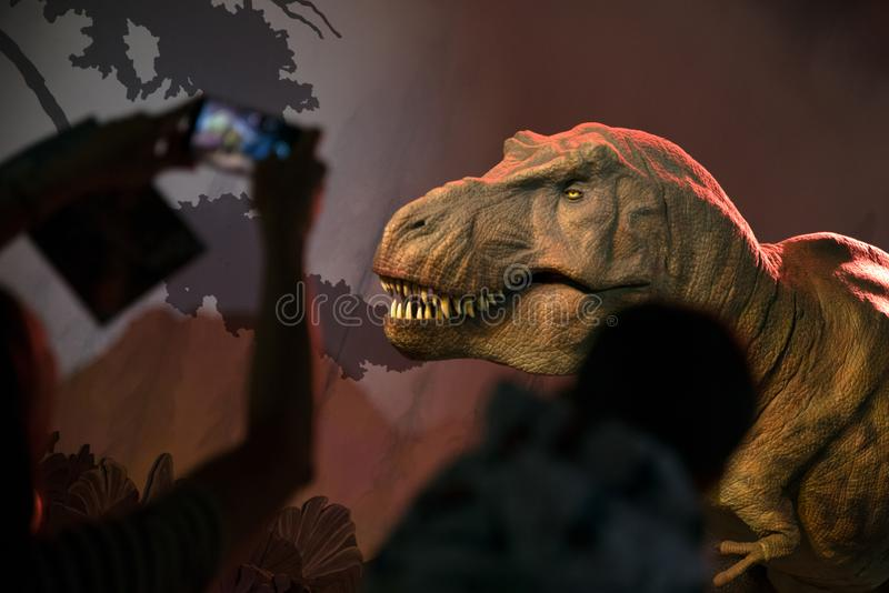 Modelo do Tyrannosaurus Rex imagem de stock
