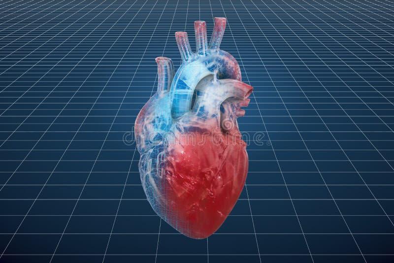 Modelo do visualização 3d cad do coração humano, rendição 3D ilustração stock
