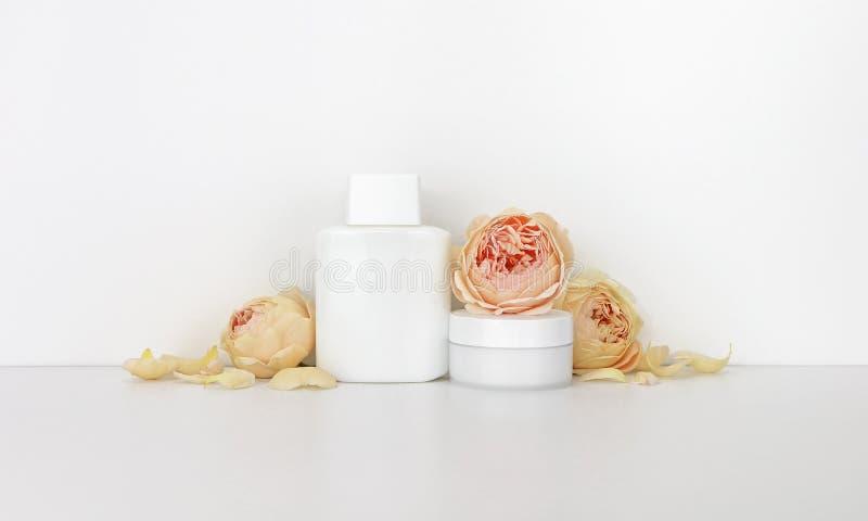 Modelo dos cosméticos com rosas imagem de stock royalty free
