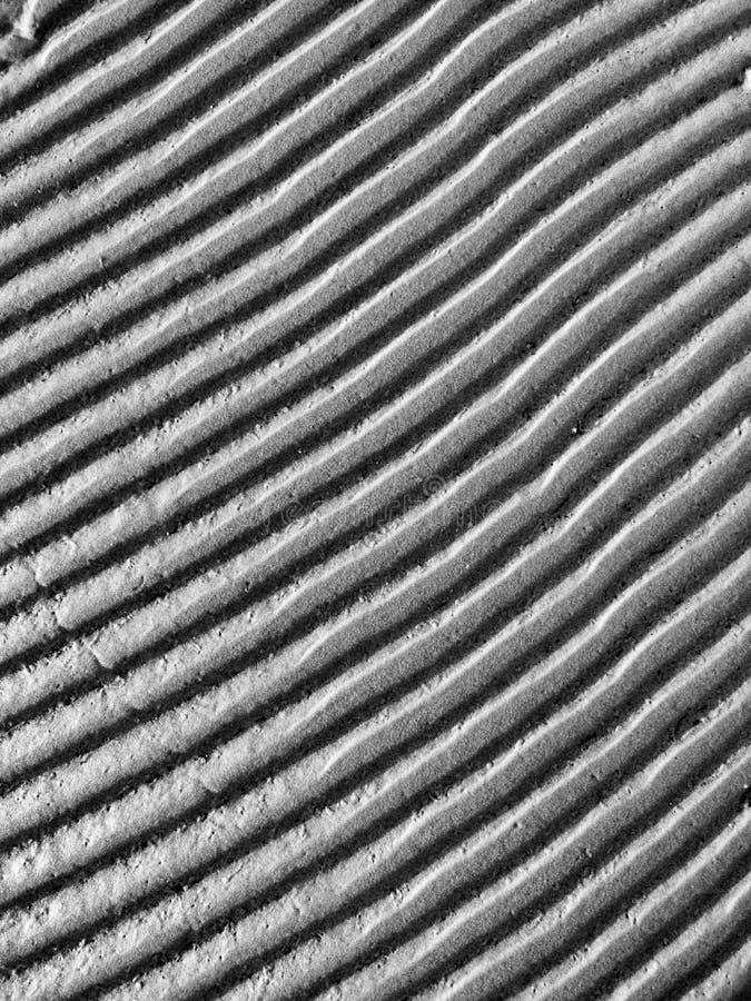 Modelo en el arena de mar Textura blanco y negro de la duna imagenes de archivo