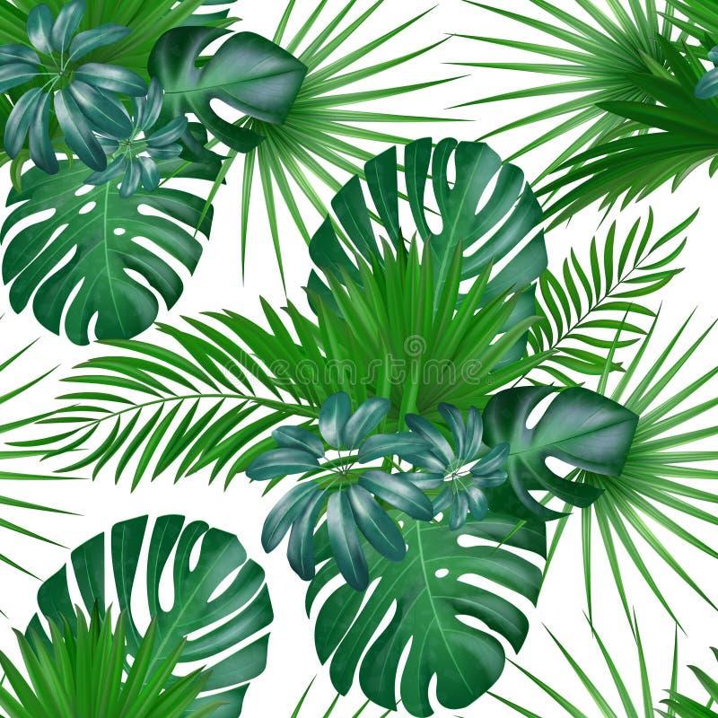 Modelo exótico botánico realista dibujado mano inconsútil del vector con las hojas de palma verdes ilustración del vector