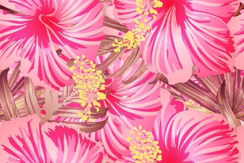 Modelo exótico rosado libre illustration