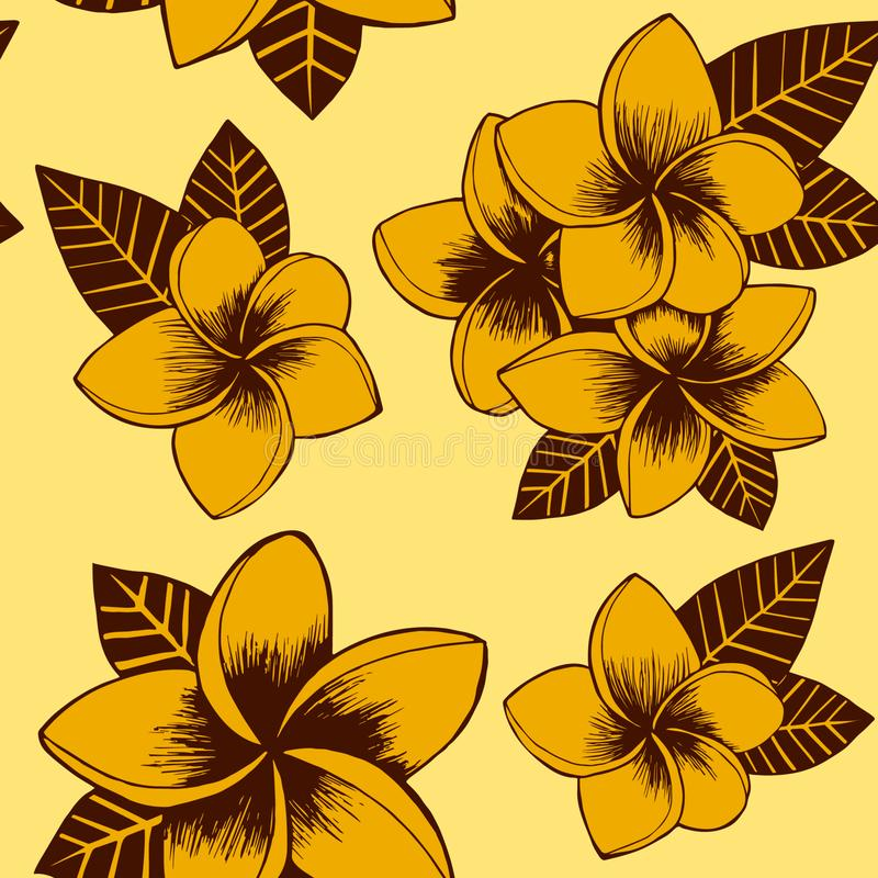 Modelo exhausto del plumeria de la mano floral amarilla inconsútil del vector libre illustration