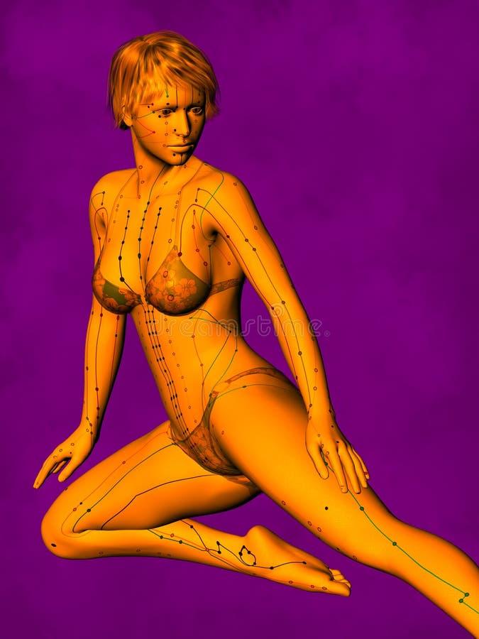 Modelo fêmea GF-POSE Bwc-v5-02-1 da acupuntura, ilustração 3D ilustração do vetor
