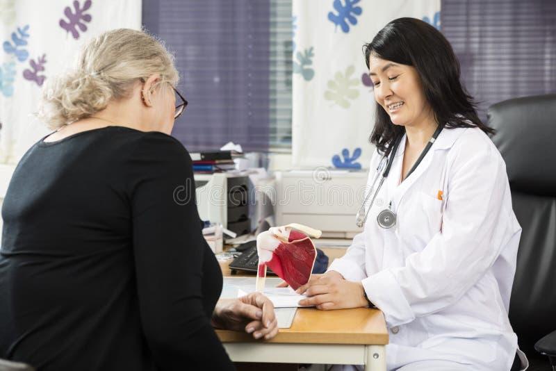 Modelo femenino To Senior P del puño del doctor Explaining Shoulder Rotator imagen de archivo