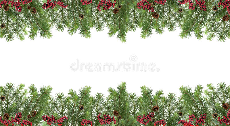 Modelo festivo ancho Árbol de navidad, conos y bayas rojas ISO imagen de archivo
