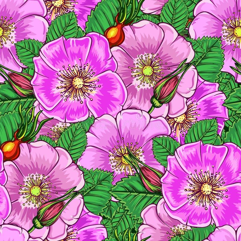 Modelo floral inconsútil stock de ilustración