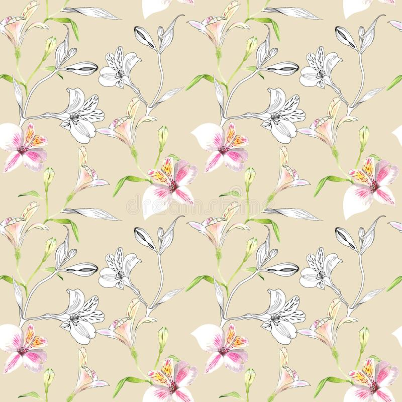 Modelo floral incons?til Modelo con las flores de los gráficos de la acuarela y de la tinta en fondo beige Alstroemeria incons?ti ilustración del vector