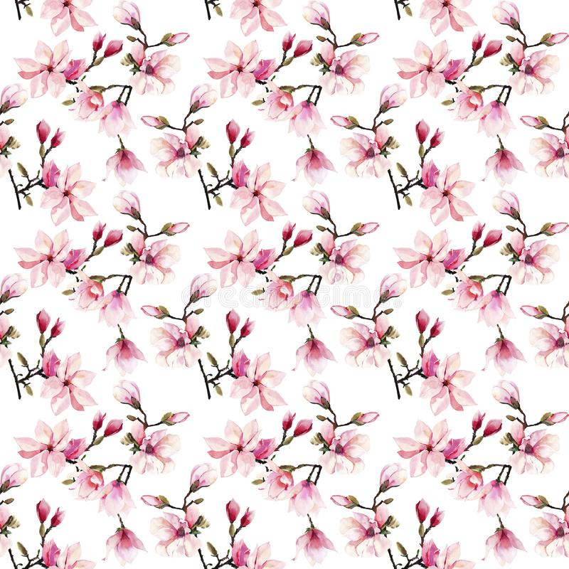 Modelo floral maravilloso herbario del verano de la oferta preciosa hermosa de las flores japonesas rosadas de una magnolia ilustración del vector
