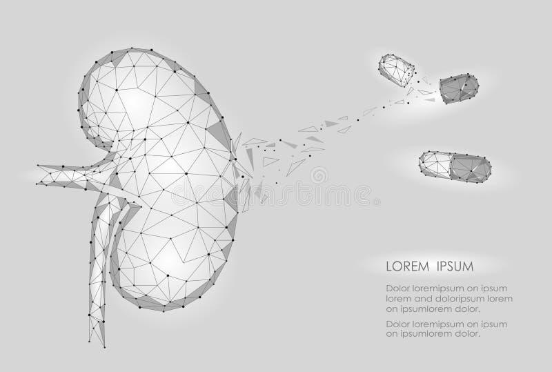 Modelo geométrico polivinílico interno de los hombres 3d del órgano del riñón bajo Cápsula de la droga del tratamiento de la enfe ilustración del vector