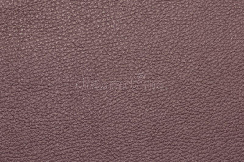 Modelo granuloso de cuero del fondo de la textura de la lila fotografía de archivo libre de regalías