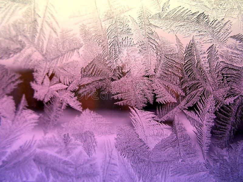 Modelo helado sobre el vidrio foto de archivo libre de regalías