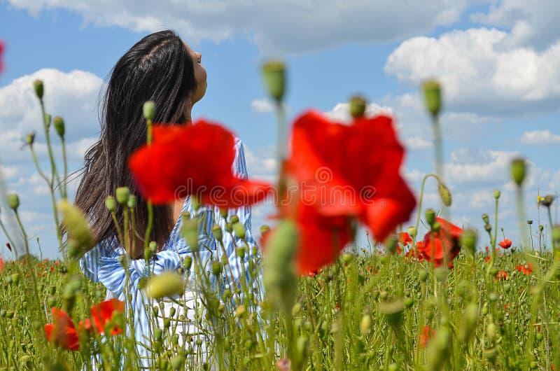Modelo hermoso cabelludo oscuro que presenta en el campo de la amapola de flores foto de archivo