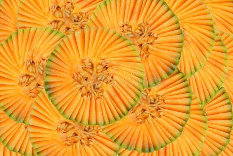 Modelo hermoso con el melón imágenes de archivo libres de regalías