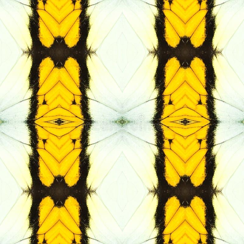 modelo inconsútil abstracto del ala de la mariposa imagenes de archivo