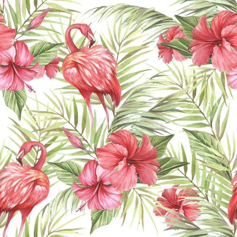 Modelo inconsútil aislado tropical con el flamenco Ejemplo de la acuarela del drenaje de la mano stock de ilustración