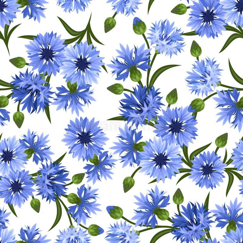 Modelo inconsútil con acianos azules Vector la enfermedad ilustración del vector