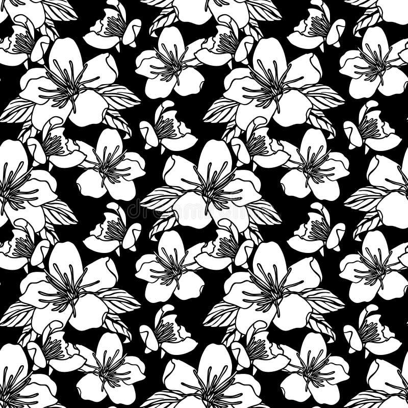Modelo inconsútil con el ejemplo común del vector de las flores stock de ilustración