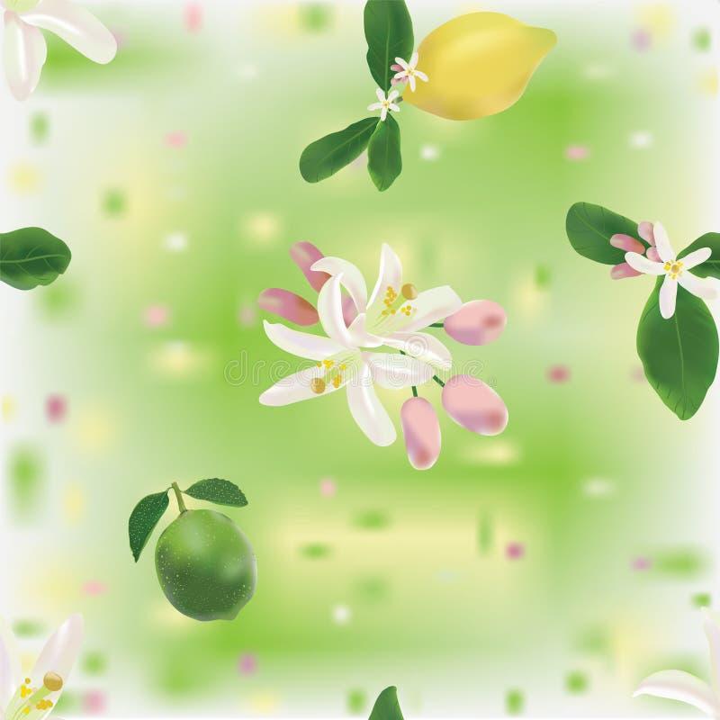 Modelo inconsútil con el limón, la cal y las flores ilustración del vector
