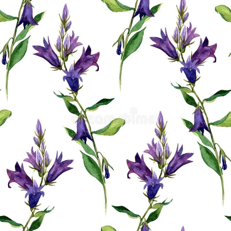 Modelo inconsútil con la acuarela que dibuja las flores de campana azules ilustración del vector