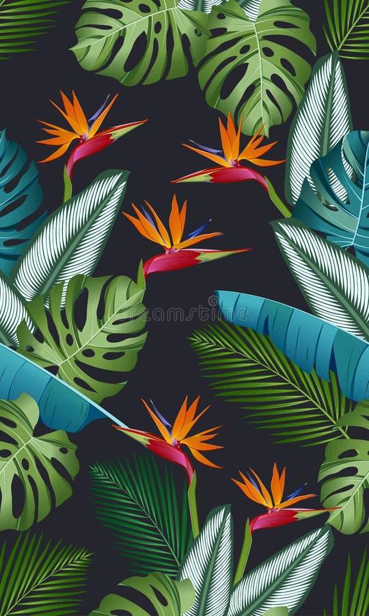 Modelo inconsútil con la ave del paraíso: hojas tropicales, palmas, monstera, calathea, modelo inconsútil del vector de la hoja d libre illustration