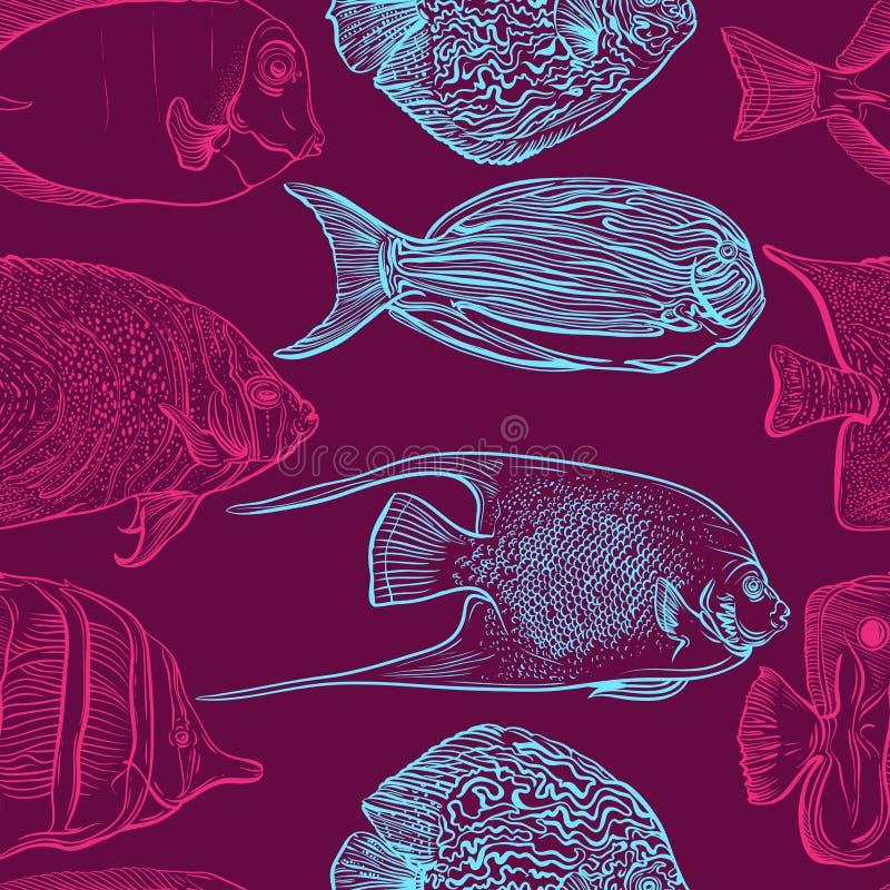 Modelo inconsútil con la colección de pescados tropicales Sistema del vintage de fauna marina dibujada mano Ejemplo del vector en stock de ilustración