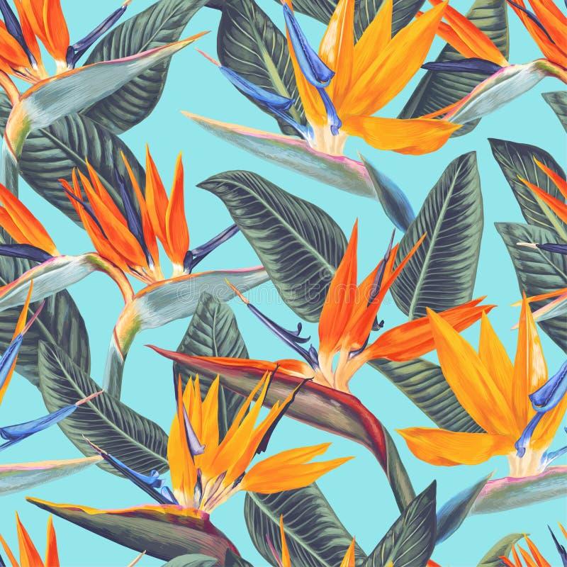 , Modelo inconsútil con las flores tropicales y hojas del Strelitzia Reginae Estilo realista, mano dibujada, vector stock de ilustración