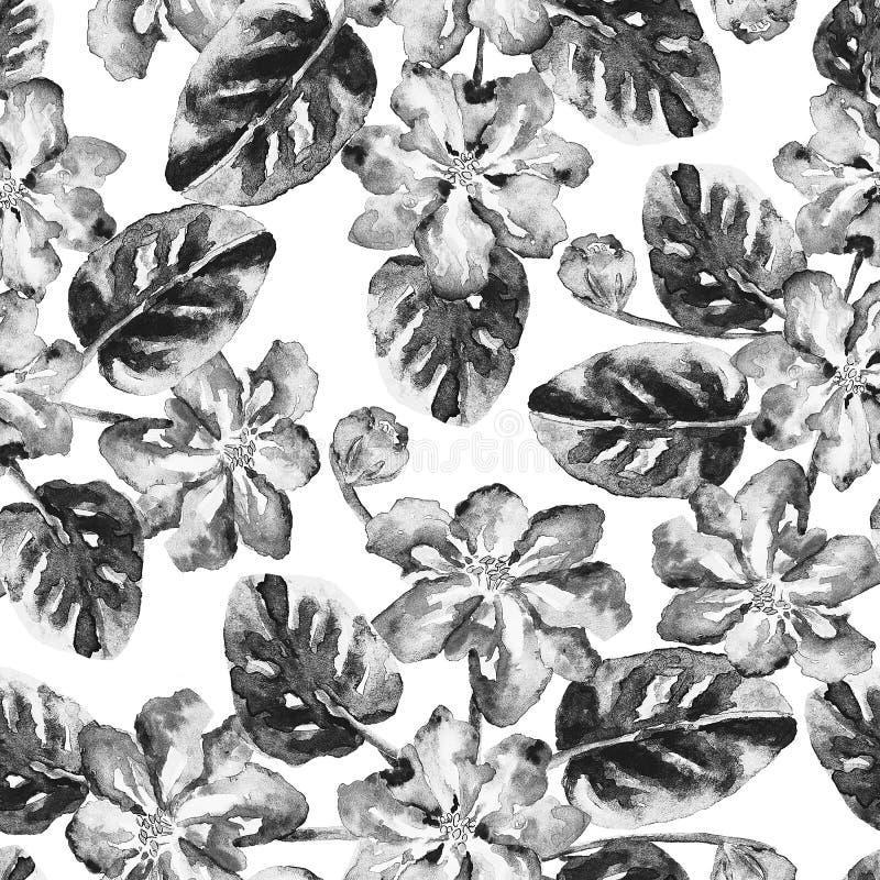 Modelo incons?til con las flores y las hojas blancos y negros de la acuarela ilustración del vector