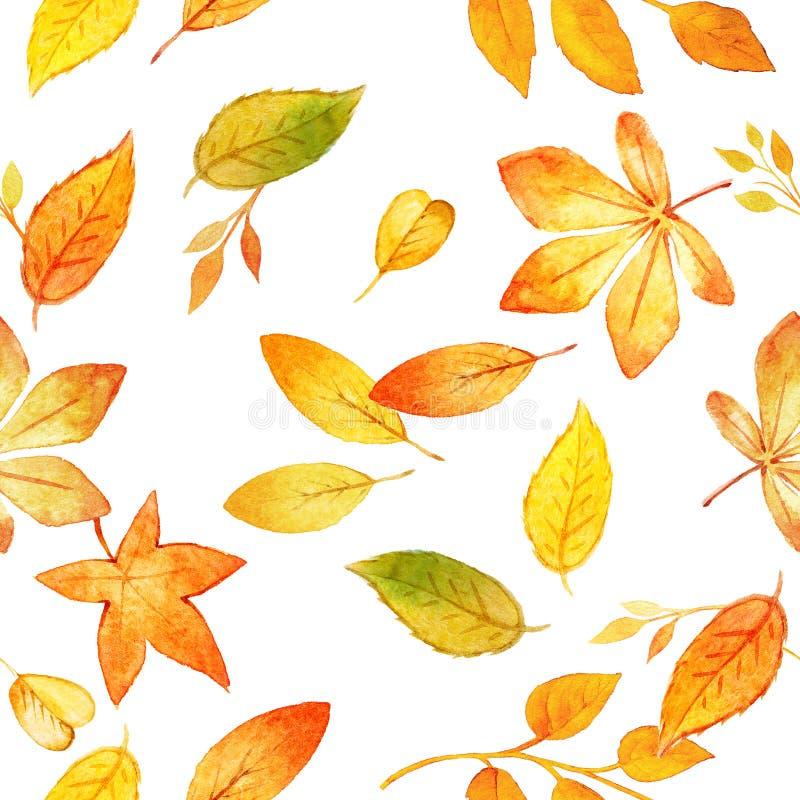 Modelo inconsútil con las hojas de otoño que dibujan por la acuarela, elementos dibujados mano Plantilla para los proyectos de DI fotografía de archivo libre de regalías