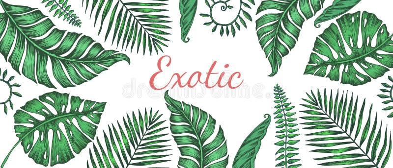 Modelo inconsútil con las hojas de palma Ejemplo del vector para la impresión de la tela libre illustration