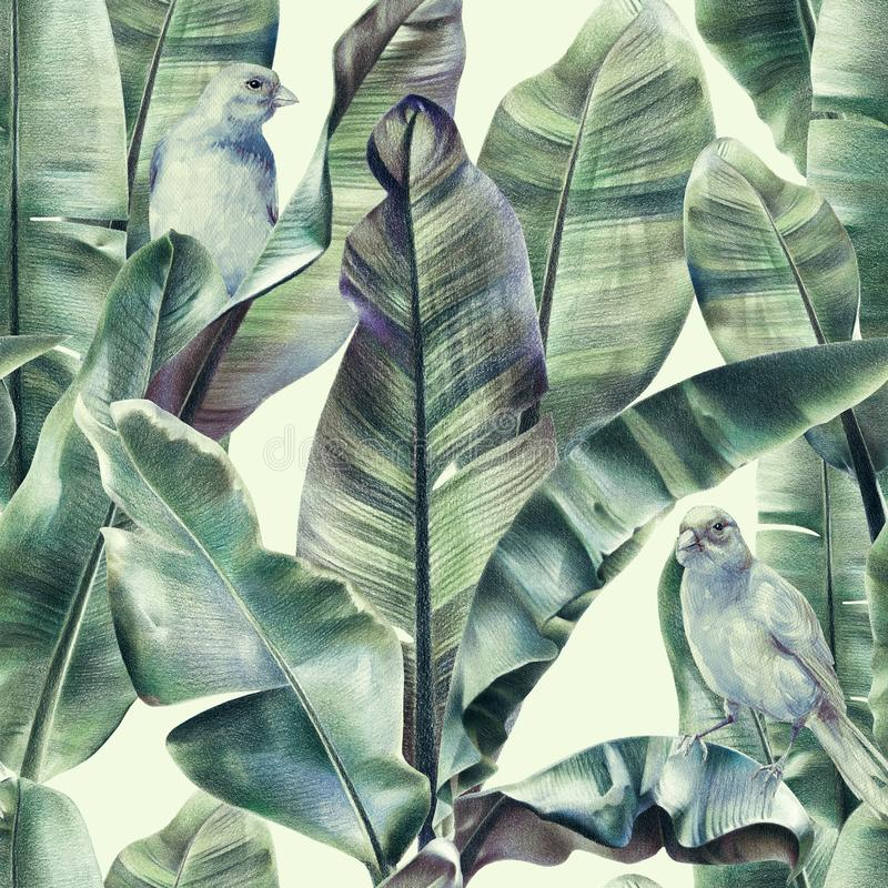 Modelo inconsútil con las hojas del plátano y los pájaros exóticos en un fondo beige apacible ilustración del vector