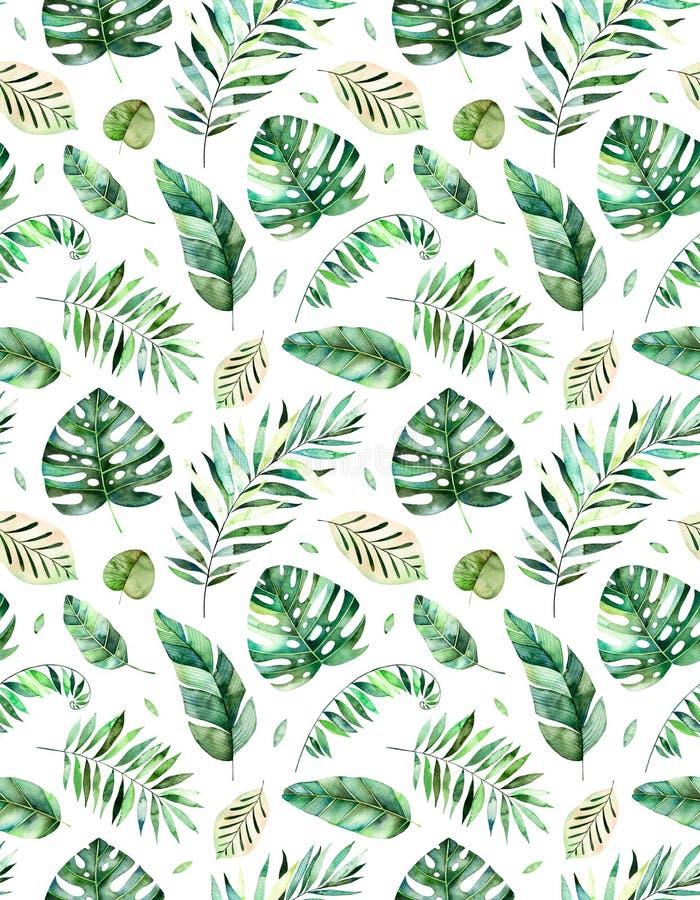 Modelo inconsútil con las hojas tropicales de la acuarela pintada a mano de alta calidad Colección tropical del bosque stock de ilustración