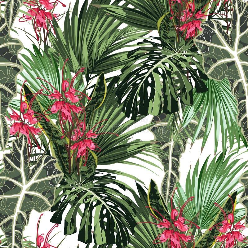 Modelo inconsútil con las hojas tropicales y las flores rojas del protea del paraíso El monstera verde claro de la palma se va en stock de ilustración