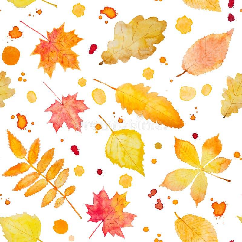 Modelo inconsútil con las hojas y el chapoteo de otoño de la acuarela stock de ilustración