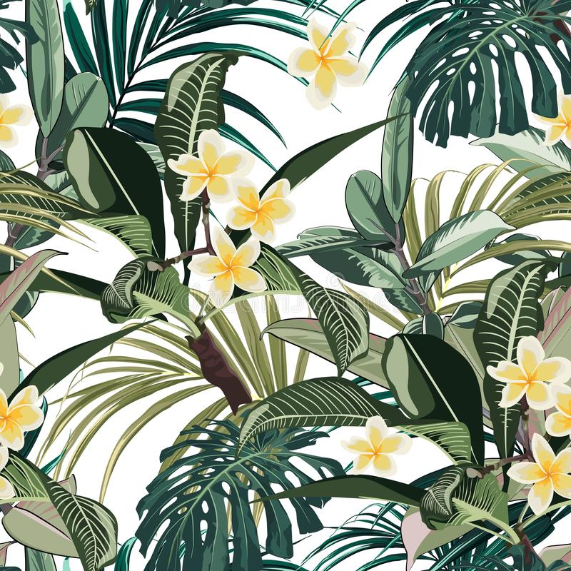 Modelo inconsútil con las hojas y las flores tropicales del plumeria del paraíso El monstera oscuro y verde claro de la palma se  stock de ilustración