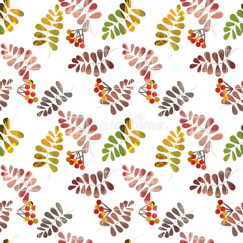 Modelo inconsútil con las hojas y la baya coloridas de otoño en blanco ilustración del vector