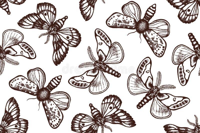 Modelo inconsútil con las mariposas de la noche en estilo retro Fondo biológico con los insectos Mano drenada ilustración del vector