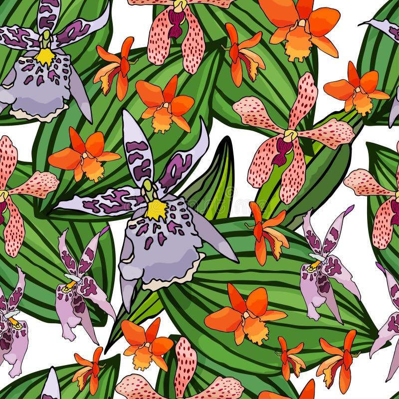 Modelo inconsútil con las orquídeas y los elementos florales libre illustration