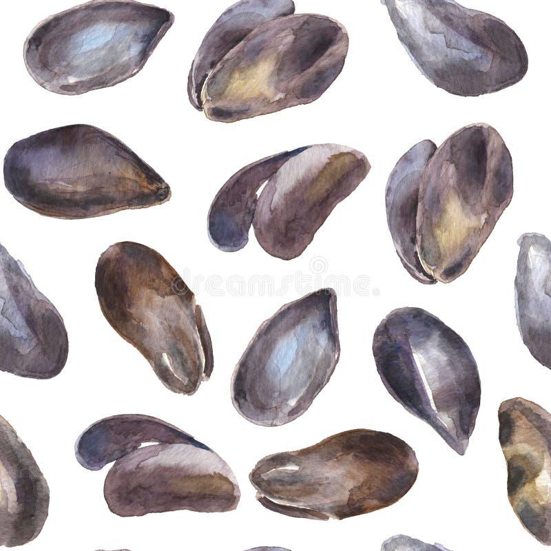 Modelo inconsútil con las ostras de la acuarela en blanco libre illustration