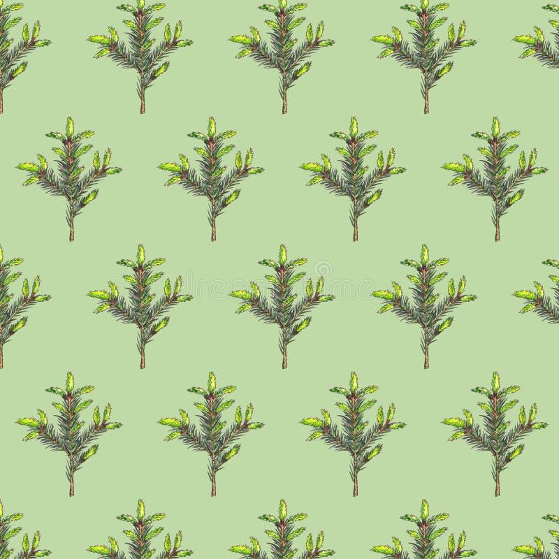 Modelo inconsútil con las ramas del abeto en fondo verde stock de ilustración