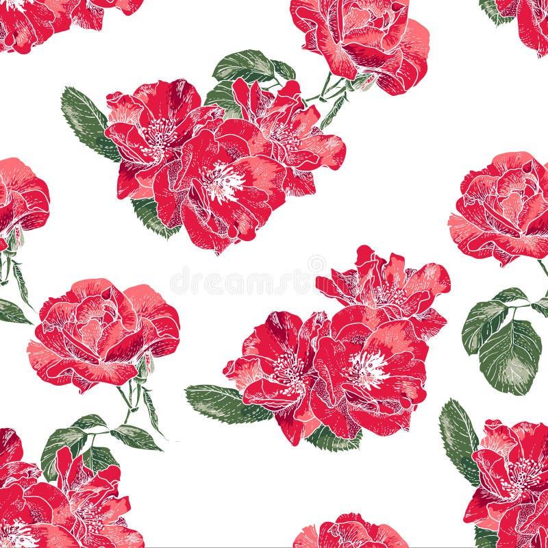 Modelo inconsútil con las rosas del vintage ilustración del vector