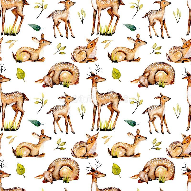 Modelo inconsútil con los ciervos de la acuarela, los ciervos del bebé y los elementos florales libre illustration