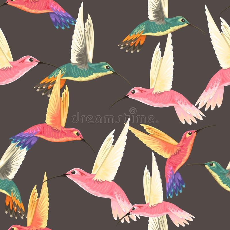 Modelo inconsútil con los colibríes ilustración del vector