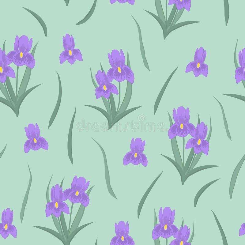 Modelo inconsútil con los iris y las hojas púrpuras en un fondo verde claro libre illustration