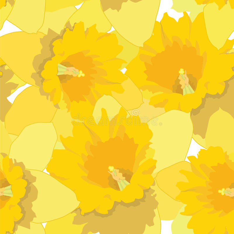Modelo inconsútil con los narcisos de las flores ilustración del vector