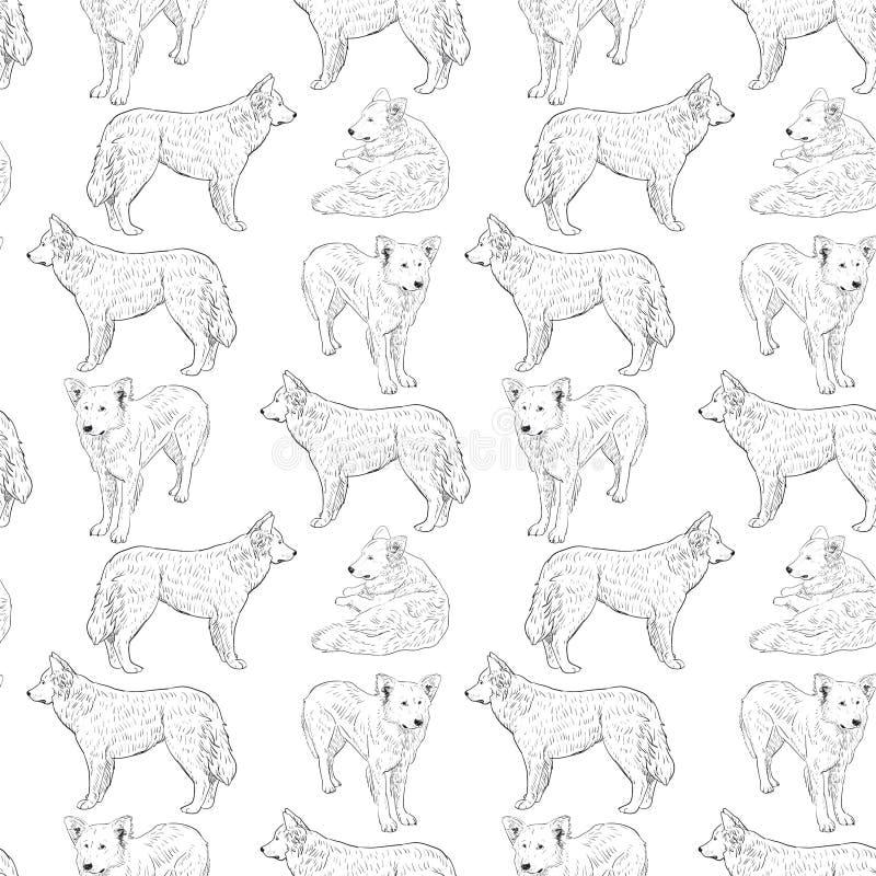 Modelo inconsútil con los perros pastor Dibujo de bosquejo Contorno negro en un fondo blanco ilustración del vector