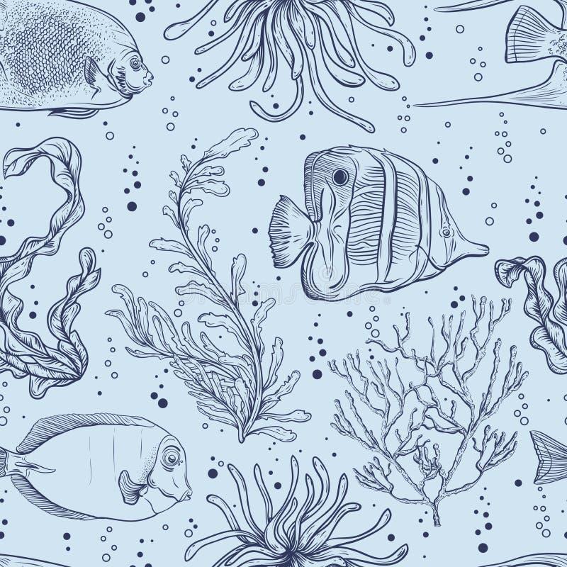Modelo inconsútil con los pescados tropicales, las plantas marinas y la alga marina Vida marina dibujada mano del ejemplo del vec stock de ilustración