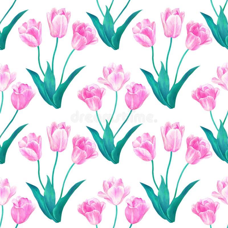 Modelo incons?til con los ramos de tres tulipanes rosados con las hojas verdes en colores en colores pastel Acuarela dibujada man stock de ilustración