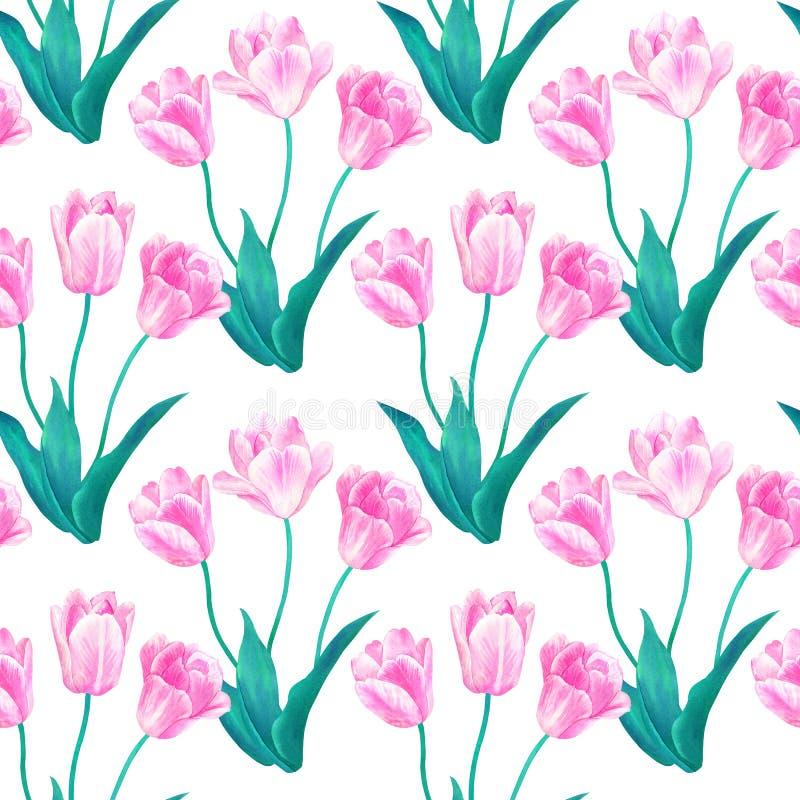 Modelo incons?til con los ramos de tres tulipanes rosados con las hojas verdes en colores en colores pastel Acuarela dibujada man libre illustration