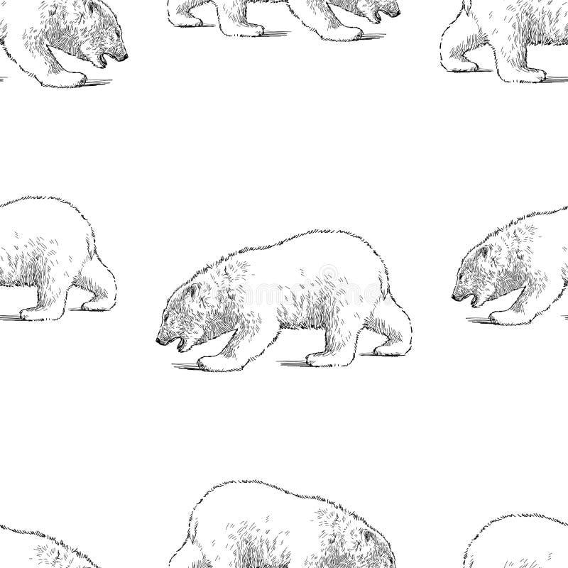 Modelo inconsútil de bosquejos de un cachorro del oso polar fotos de archivo libres de regalías